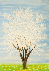 White tree in blossom, painting
