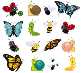 colorful insect assortment
