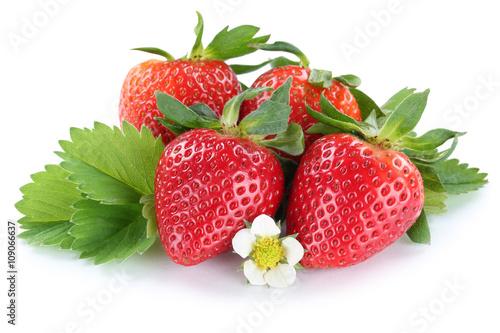 erdbeere erdbeeren beeren beere frucht mit bl ten freisteller f fotos de archivo e im genes