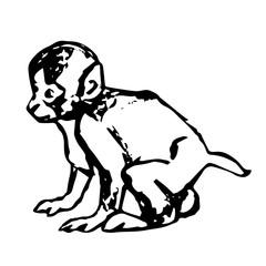 Little monkey cub
