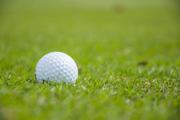 detail of golf ball on grass