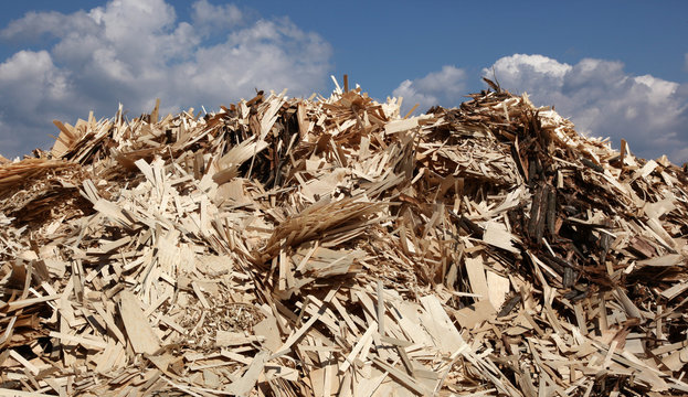 Huge pile of wood waste for recycling