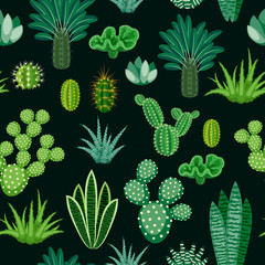 Seamless pattern of cacti and succulents.