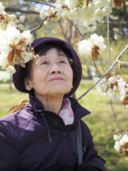 80歳の母とお花の公園