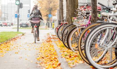 autumn bicycle path in Ljubljana