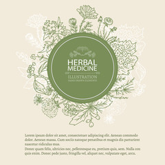 Herbal medicine hand drawn elements vintage tempate sketch
