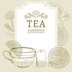 Tea hand drawn elements vintage tea sketch vector
