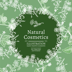 Natural cosmetics with herbs and flowers hand drawn vintage