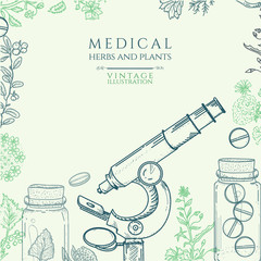 Herbal medicine hand drawn vector illustration
