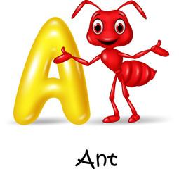 Illustration A of letter for Ant