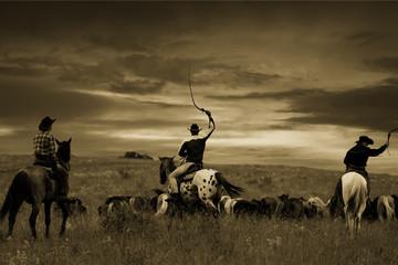 Wall Mural - Three cowboys drive herd of horses , toning, vignetting