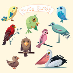 Cartoon collection with funny little birds. Pelican, duck, parrot, eagle, heron.