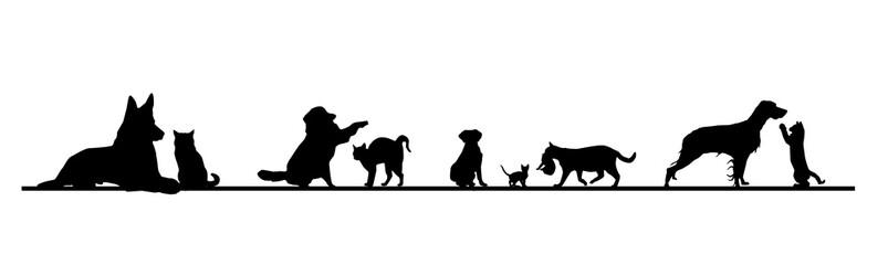 Frise chiens et chats