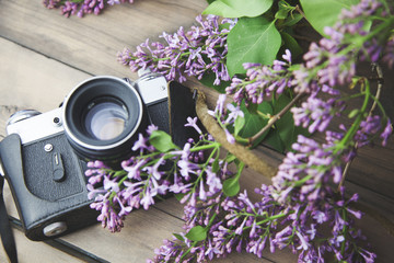 lilac and camera