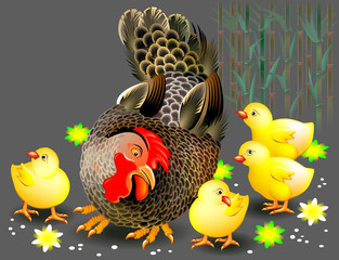 Illustration of hen and chickens on a meadow, vector cartoon image.