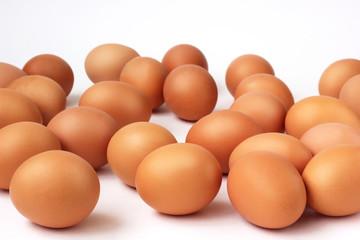 Brown chicken eggs on white background.