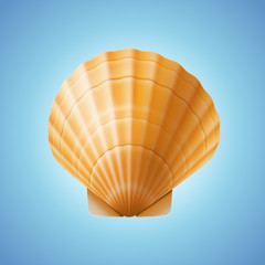 Realistic scallop seashell, isolated on blue background