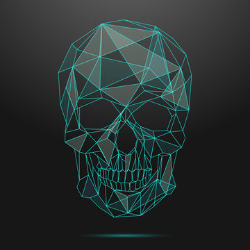 Low poly skull. Thin line skull vector
