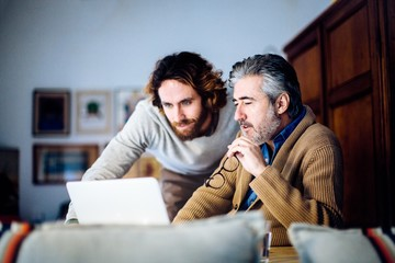 Mature man and adult son sitting in living room browsing laptop