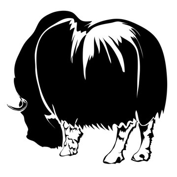 Realistic outline bison vector illustration. Can be use for logo