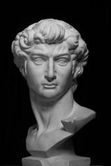 gypsum head of Michelangelo's David