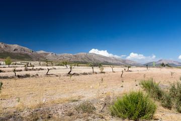 Nature of Spain, rural landscape