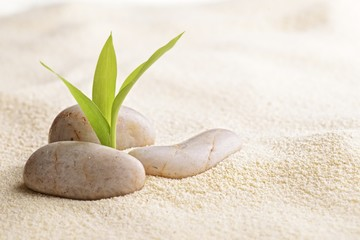 Poster de jardin Zen pierres a sable zen stones and bamboo on the sand