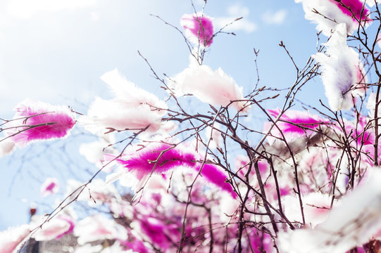 Pink feathers on twigs