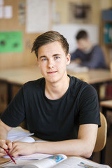 Teenage boy in classroom