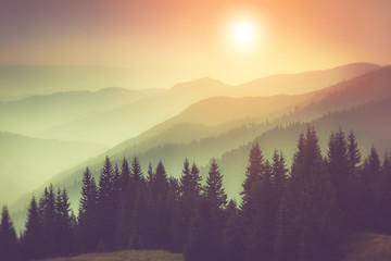 Landscape of misty  mountain hills and forest. Fantastic evening glowing by sunlight.