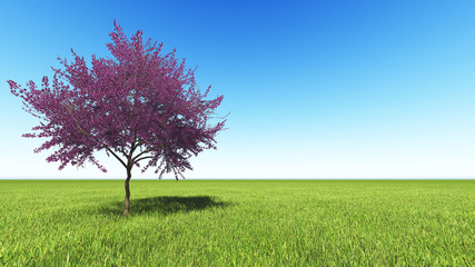 green flied of grass with red tree