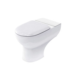 New toilet bowl isolated