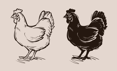 chicken vector logo. farm, poultry, hen, fowl icon