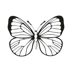 silhouette butterfly black and white butterfly pattern vector, butterfly wings,