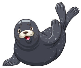 Black seal with happy face