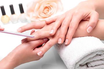 Obraz Piękne dłonie z manicure francuski - fototapety do salonu