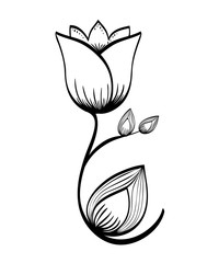 Floral design. Doodle illustration.  white background