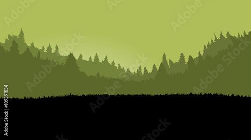 Misty forest landscape for games background, with dark grass