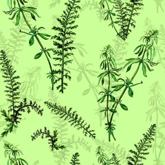 Seamless pattern made from watercolor hand painted grass
