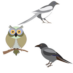 Vector illustration of a set of images of birds, illustration bi