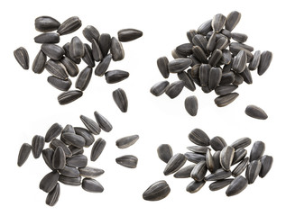 Closeup of black sunflower seeds isolated on white background. Pile of sunflower seeds.