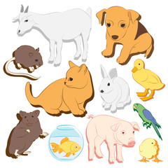 Animals pets vector colorful icons set