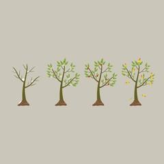 Tree in four seasons - spring, summer, autumn, winter