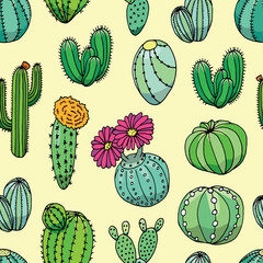 Cactus seamless pattern vector background