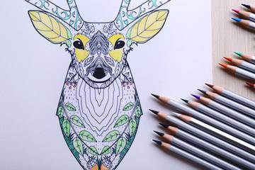 Adult anti stress coloring and crayons closeup