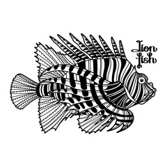 Graphic lion fish