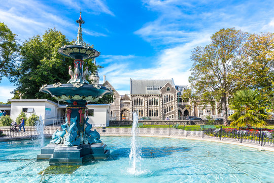 """Under the trees"", Botanic gardens, Christchurch, New Zealand"