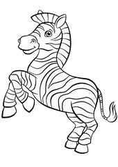 Little cute zebra stands and smiles.