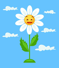 White chamomile. Vector flat cartoon illustration