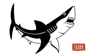 Shark, vector cartoon illustration